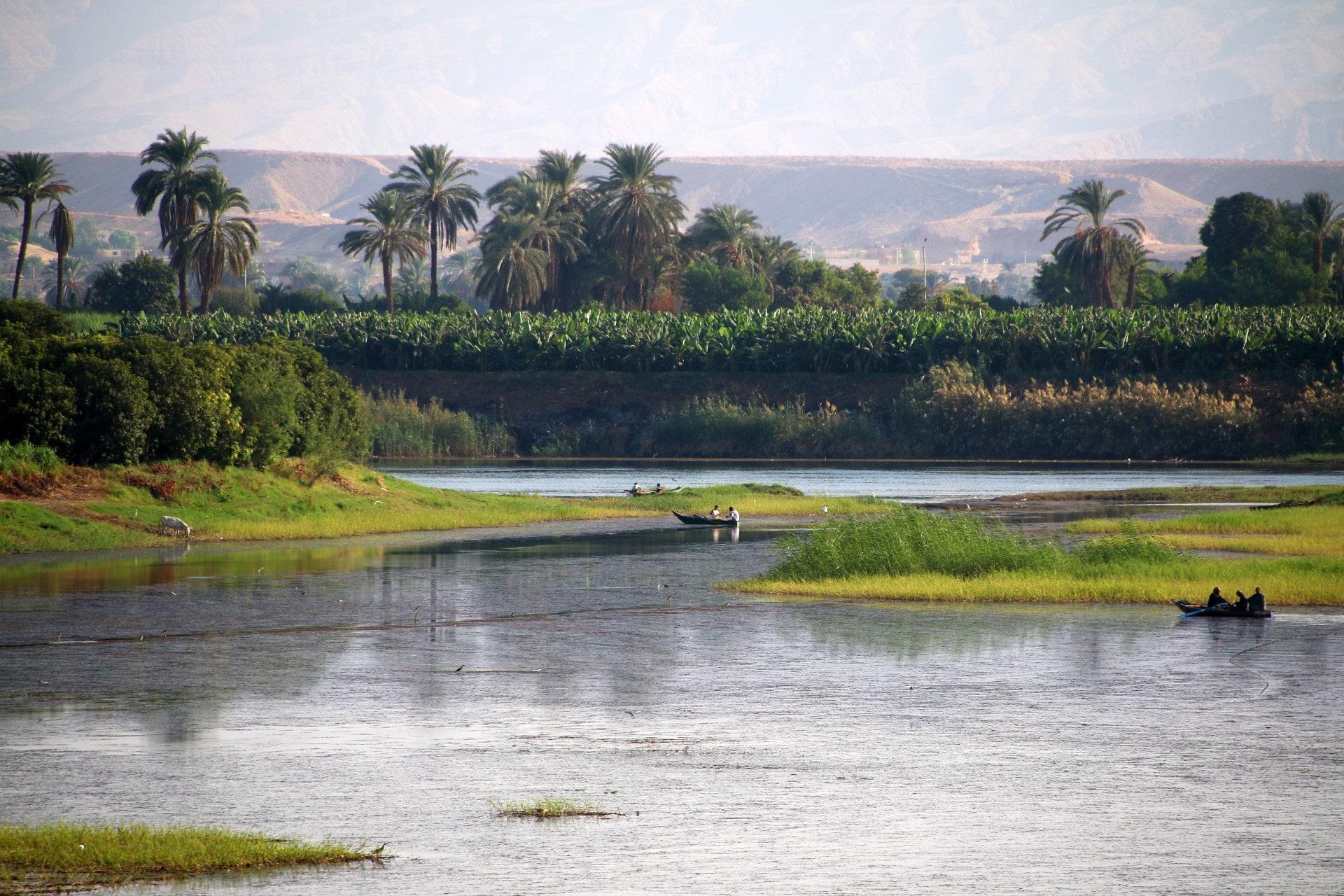 Croisière sur le Nil bateau 5* I Nanci Falco 2009