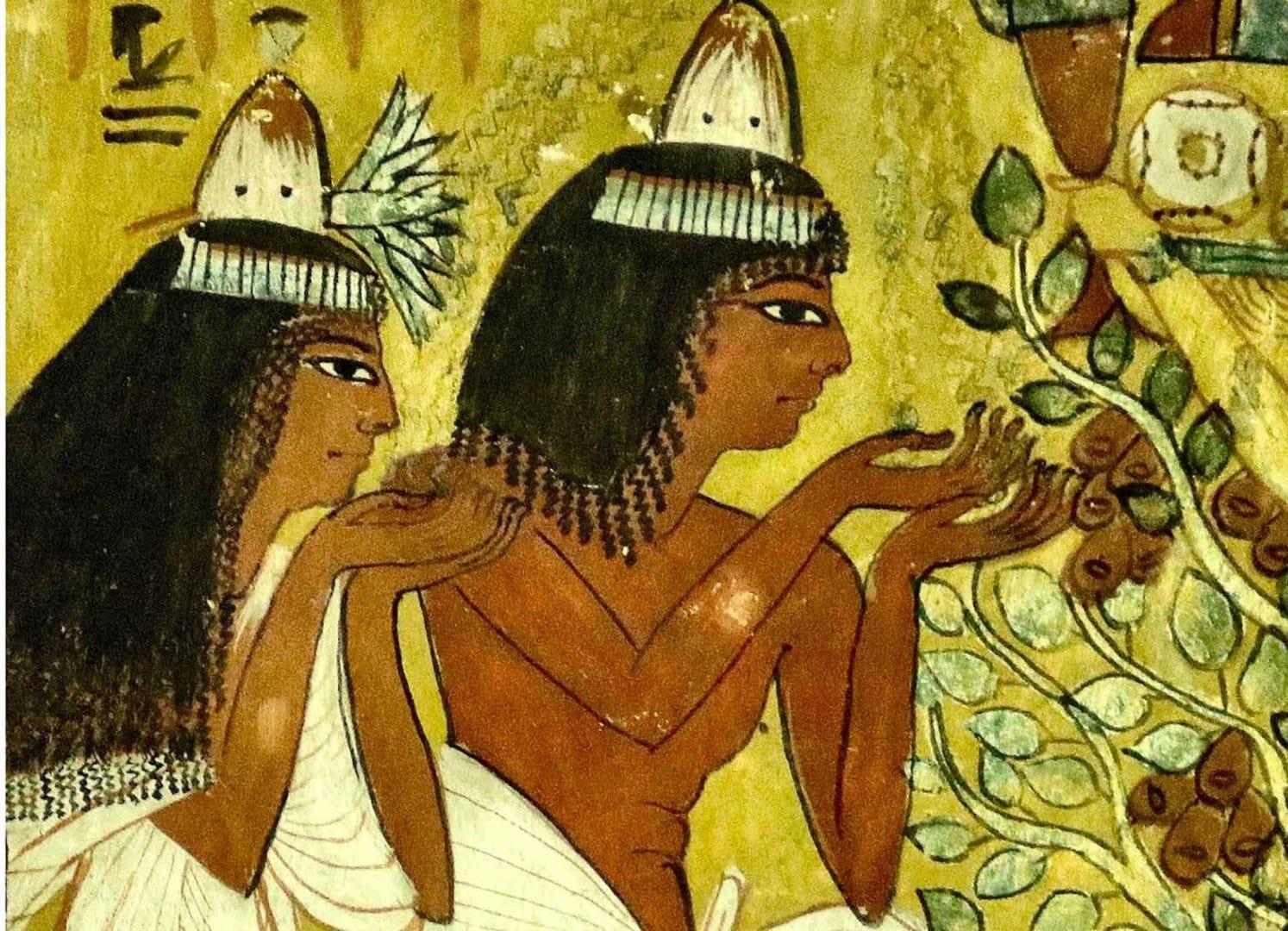 Le Caire et Croisière sur le Nil et Abou Simbel