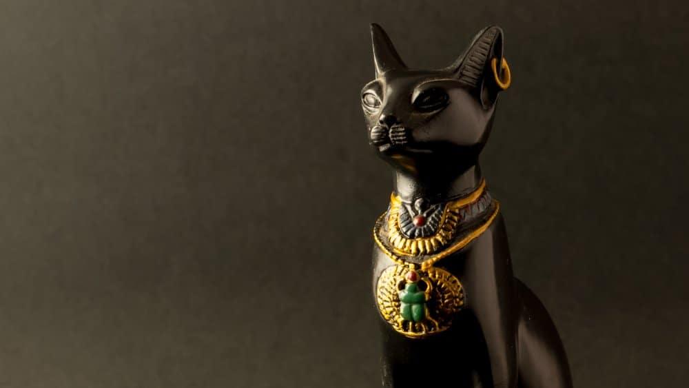 Le Chat d'Egypte - Actautalie ....