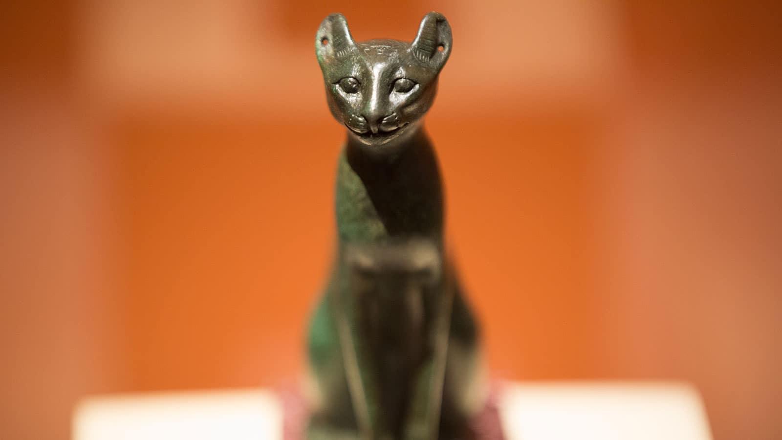 Le Chat d'Egypte - Actautalie ..