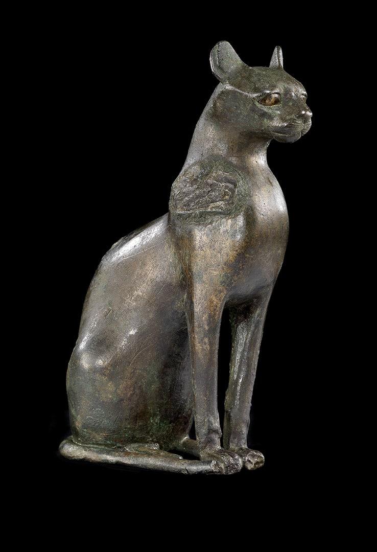 Le Chat d'Egypte - Actualite......
